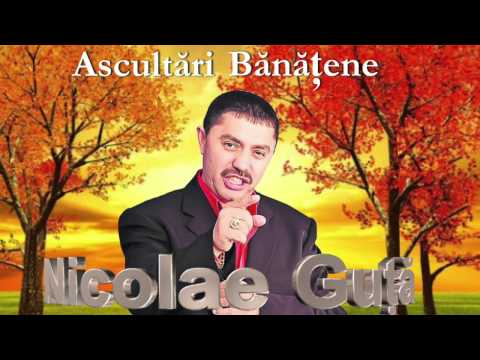 NICOLAE GUTA - COLAJ BANATENE