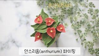 안스리움(anthurium) 파이핑_앙금플라워_지수케이…