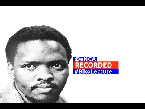 The annual Steve Biko lecture