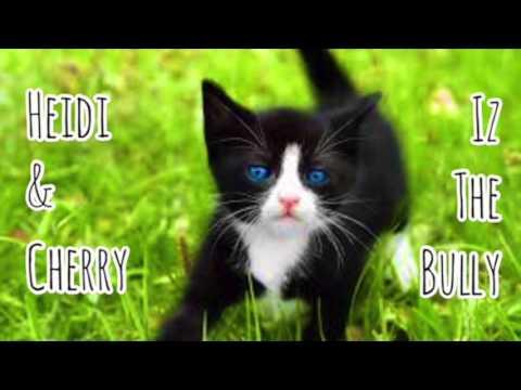 Heidi & Cherry Meet Iz The Bully - Children's Bedtime Story/Meditation