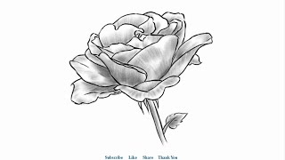 How to draw a Beautiful Rose with Shading Easy to Draw