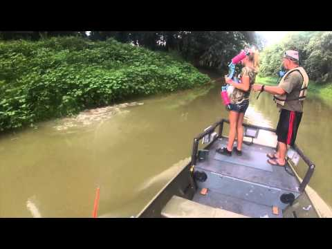 Bowfishing On The Wabash River Asian Carp, Grass Carp, Big Head, Carp, Gar
