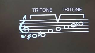 The Whole Tone Scale by Leonard Bernstein/Knowledge Series 6 Ruben Diaz Learn Paco de Lucia on Skype