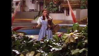 The Wizard Of Oz, By Victor Fleming (1939) - Toto, I've Got A Feeling We're Not In Kansas Anymore