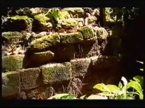 Lost Cities Of The Maya - Ancient Civilizations History Docu