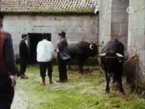 Resultado de imaxes para historias de galicia