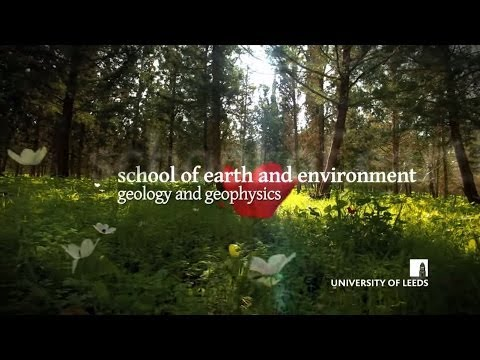 School of Earth and Environment, Geology and Geophysics