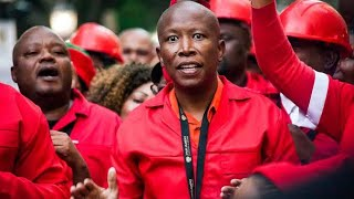 South African Politician 'Julius Malema' Defends Nigerians From Xenophobia In Powerful Spe