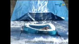 Panico na TV 2012