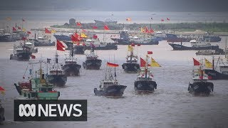 Special report: Crisis in the world's fisheries