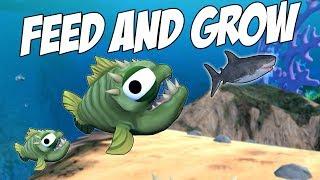 ОГРОМНАЯ ПИРАНЬЯ ПРОТИВ БЕЛОЙ АКУЛЫ   Feed and Grow: Fish