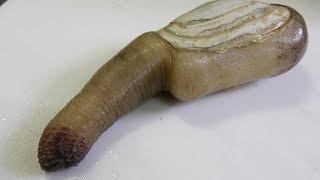 「絶品」頂き物の貝が奇妙過ぎた‼ thumbnail
