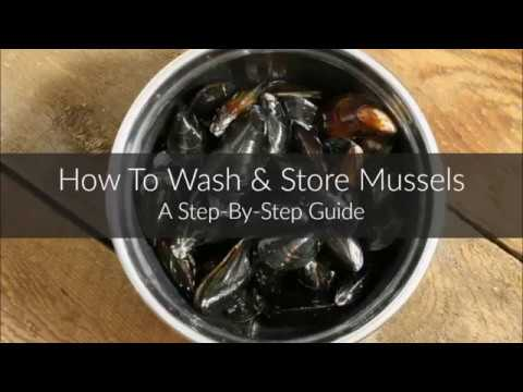 How To Wash & Store Mussels