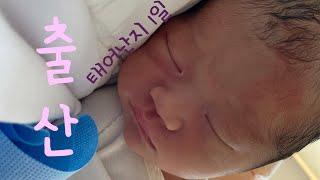 [출산했어요] 제왕절개 모자동실 혼비백산 생후1일차