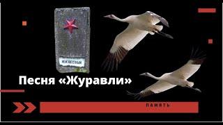 """Песня """"Журавли""""..Великая Отечественная война..."""