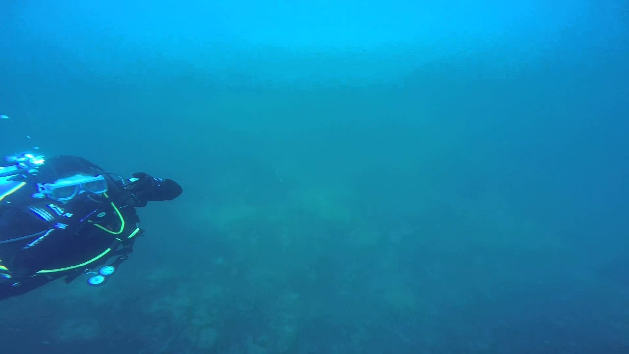 Padi Scuba Diving Certification Fanwood Nj Youtube