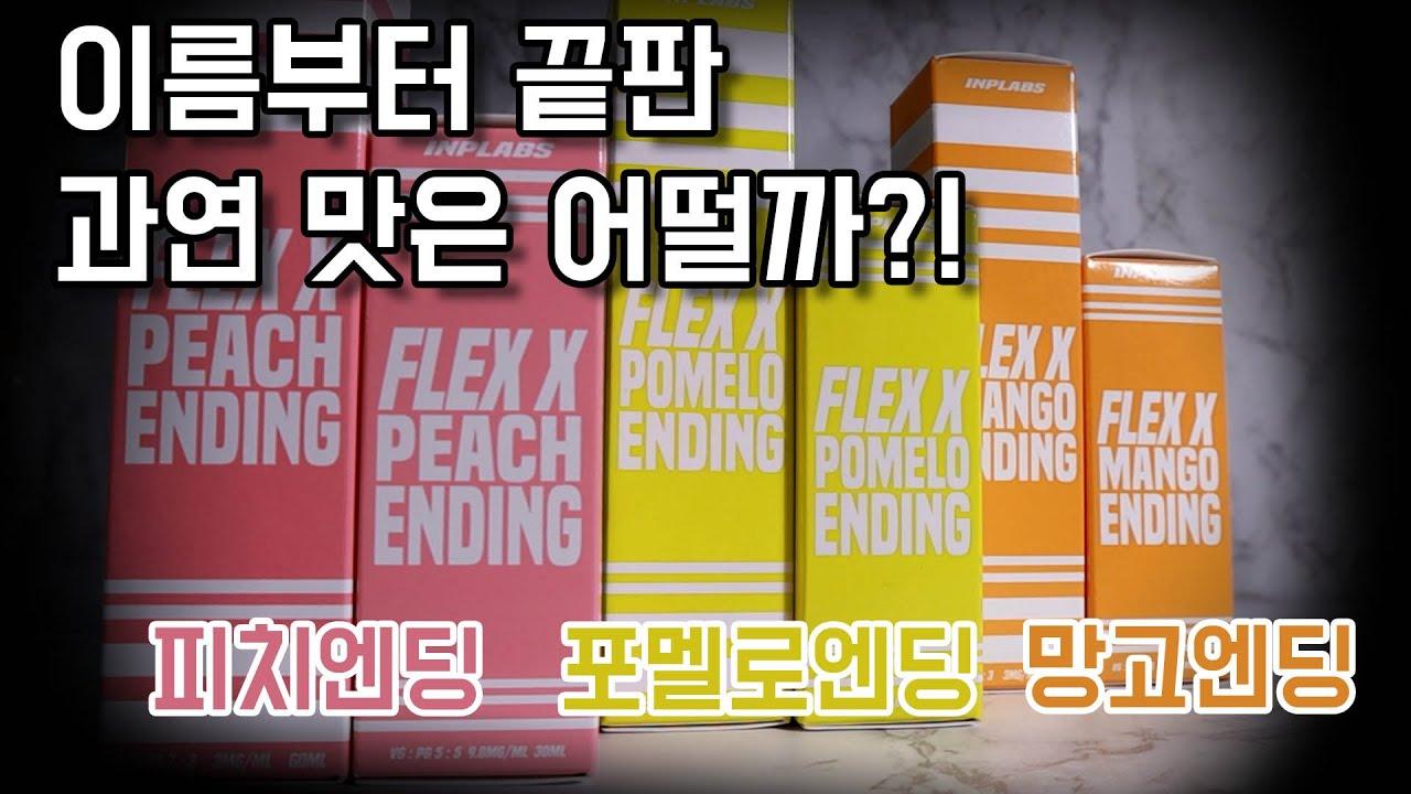 FLEX X 엔딩시리즈 입호흡/폐호흡 3종 리뷰! 과연 끝판의 맛을 보여줄까요?