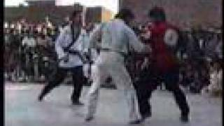 Very rare fight  kung fu vs taekwondo (Master Ehsan Shafiq)