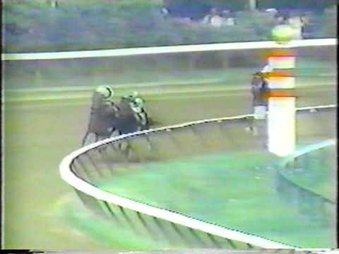 Slew O' Gold - 1984 Whitney Handicap
