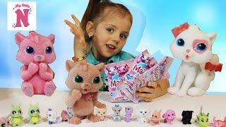 КІШЕЧКИ Маджики кошенята іграшки сюрпризи у пакетиках Колекція іграшок для дітей Відео