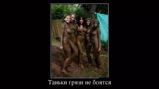 Русские видео приколы фото