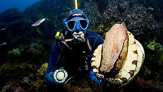 Top 5 Biggest Abalones Ever Found