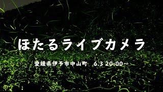 ほたるライブカメラ☆ 愛媛県伊予市中山町からのほたるの様子をライブ放...