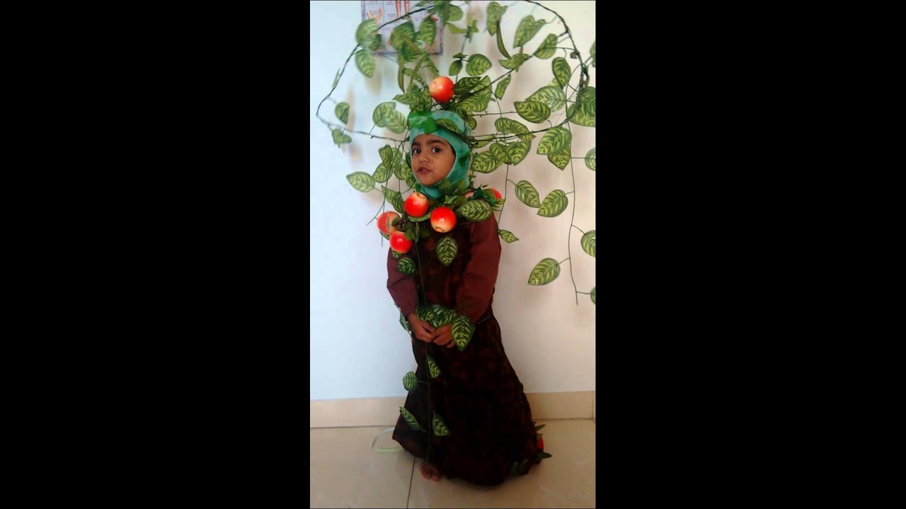 Home made tree costume naifah fathima youtube home made tree costume naifah fathima solutioingenieria Choice Image