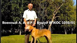 Р.Г.Будило , Песня и Бушуй Военного А.А.