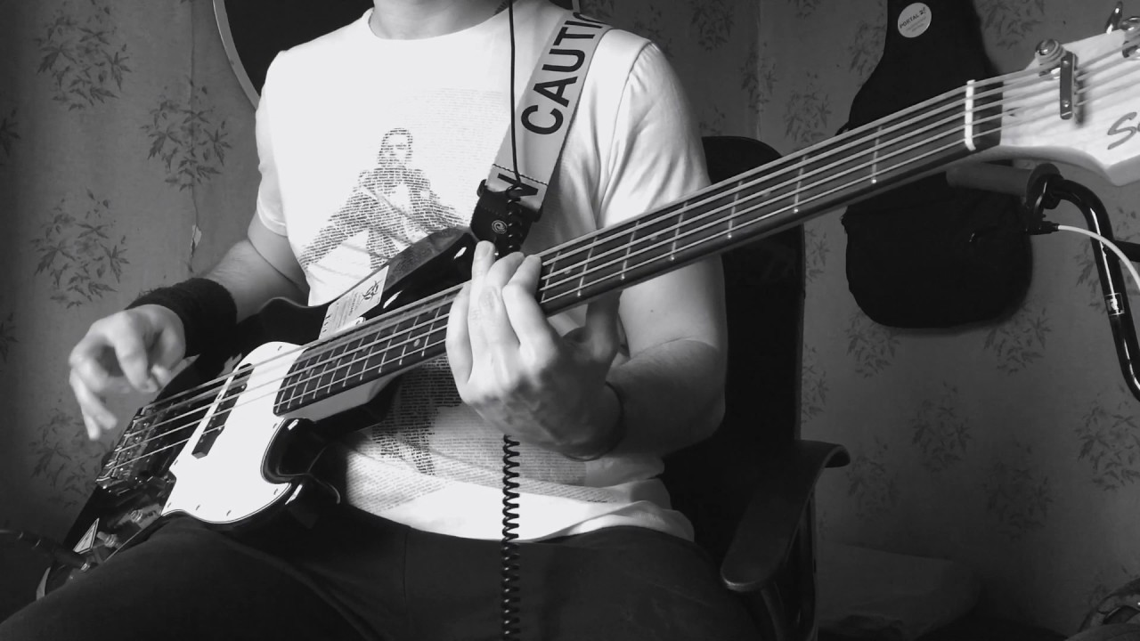 breaking-benjamin-so-cold-bass-cover-nikolay-zakharov