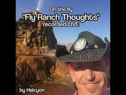 """""""Fly Ranch Thoughts"""""""