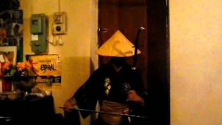 MATIAS ERHU - Oogway Ascends (Kung Fu Panda)
