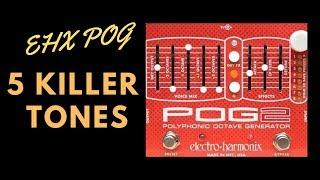 5 Killer Tones - EHX POG2