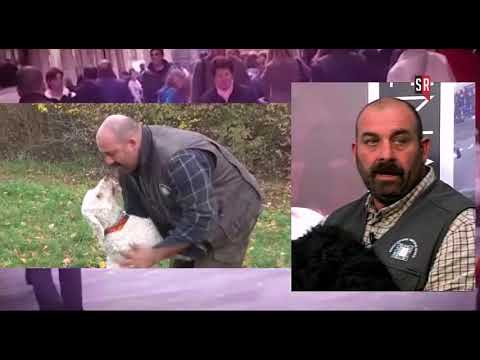 Siena Risponde - 15 novembre 2017 - Parte terza