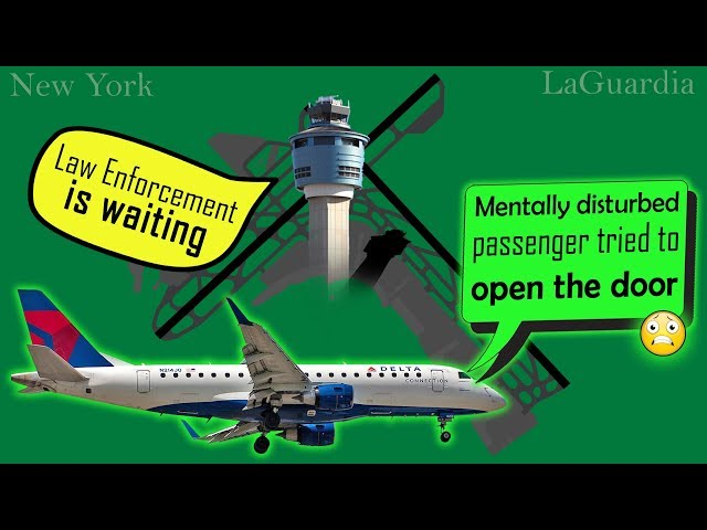 PASSENGER TRIES TO OPEN A DOOR MID-FLIGHT while landing at Laguardia!