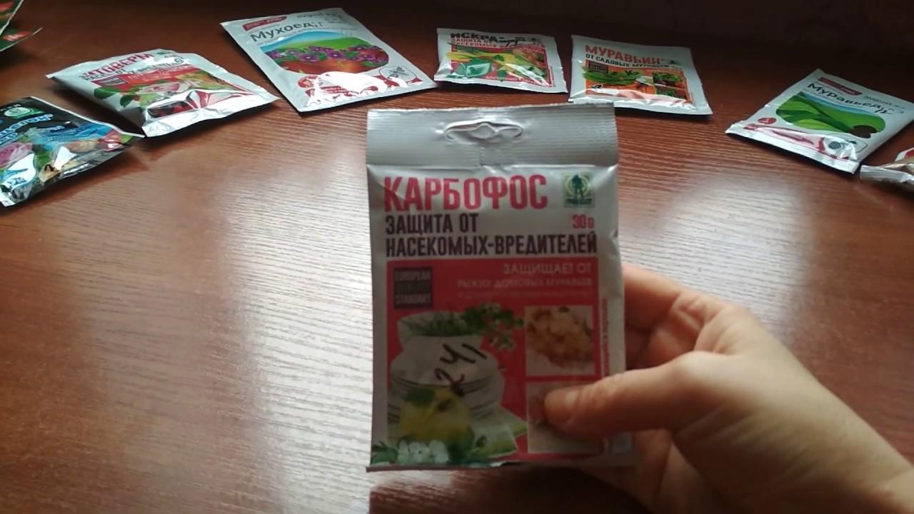 Карбофос - эффективное средство от насекомых-вредителей