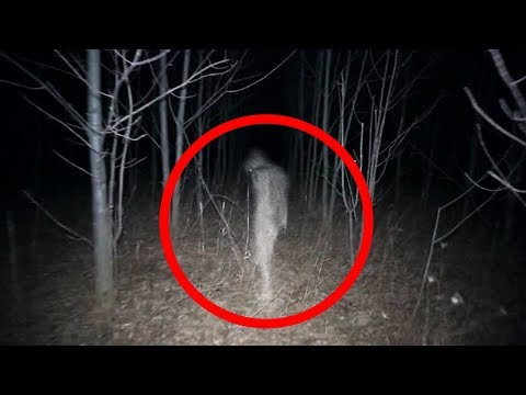 5 Scary Things Caught on Camera In the Woods Mp3