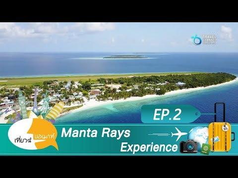เที่ยวนี้ขอเมาท์ ตอน Manta Rays Experience EP 2