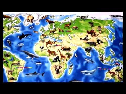 Изучаем материки и океаны нашей планеты