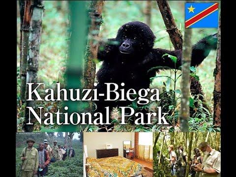 LES PARCS NATIONAUX DE LA RD CONGO 1