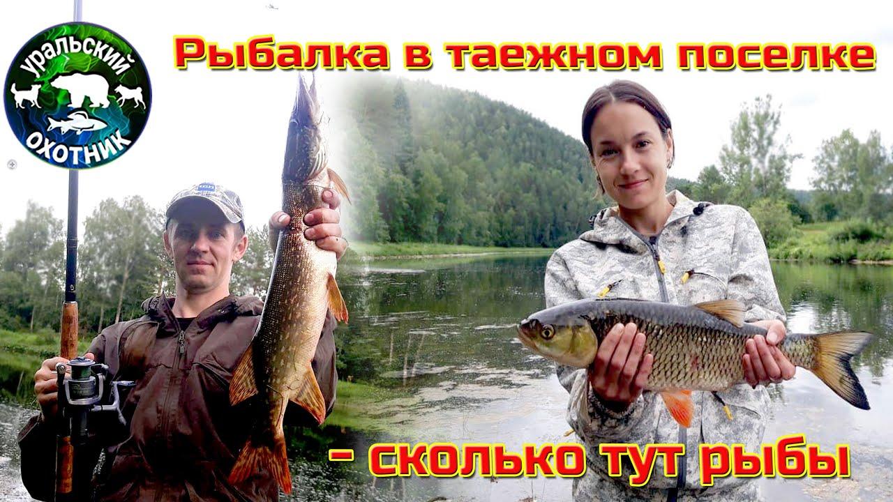 Рыбалка в таежном поселке - сколько тут рыбы.