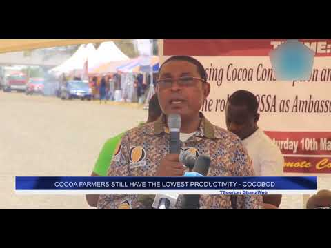 COCOA FARMERS STILL HAVE THE LOWEST PRODUCTIVITY - COCOBOD