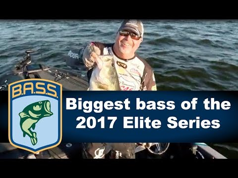 Biggest bass of the 2017 Elite Series season
