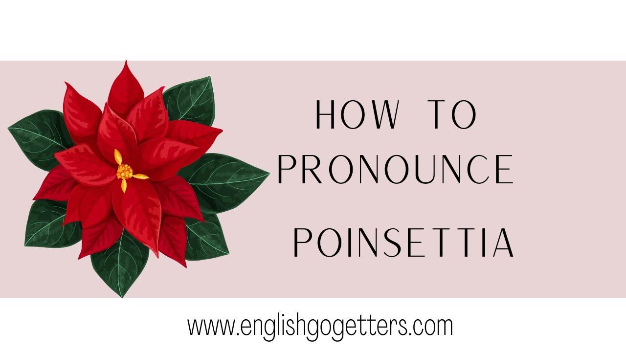 English Pronunciation How To Pronounce Poinsettia Youtube