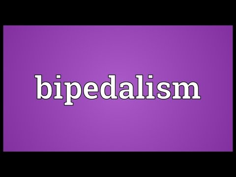 Bipedalism Meaning