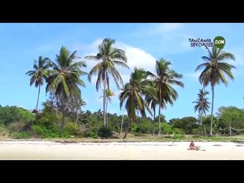 Pemba Island HD Tanzania Specialist