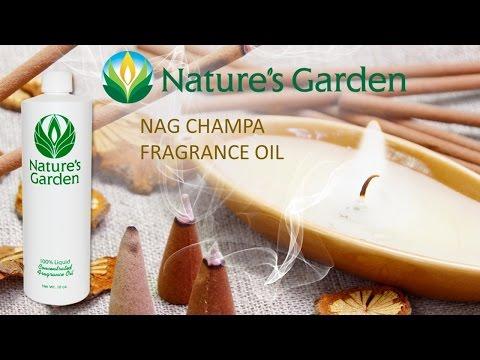 nag-champa-fragrance-oil--natures-garden