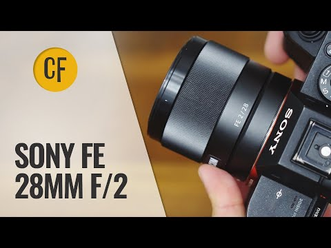 Sony FE 28mm F/2 Lens Review With Samples (Full-frame And APS-C)