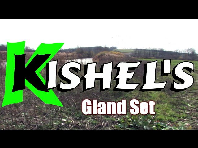 Kishel's  Gland Set For Canines