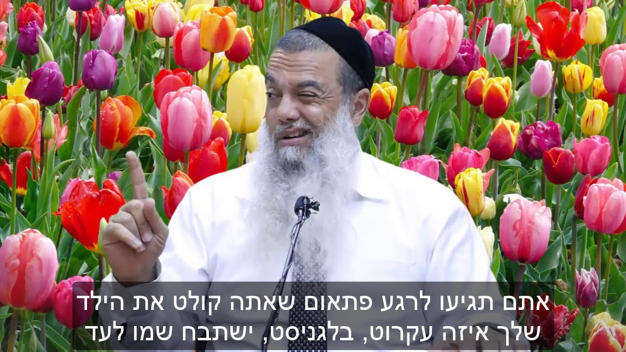 הרב יגאל כהן - תרים את הילד HD {כתוביות} - קצר ומדהים!